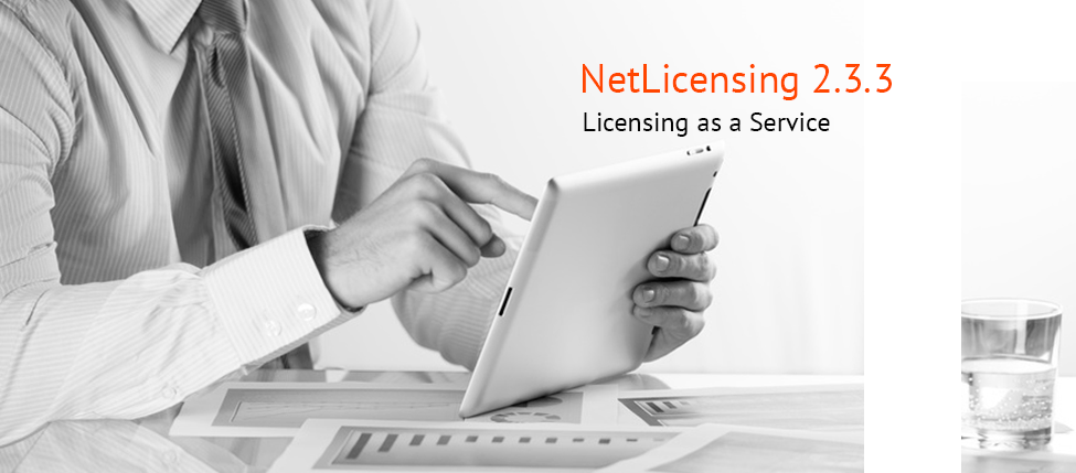 Labs64 NetLicensing 2.3.3 is Out!