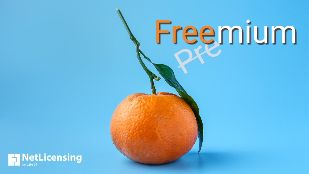 Importance of Freemium Pricing Model